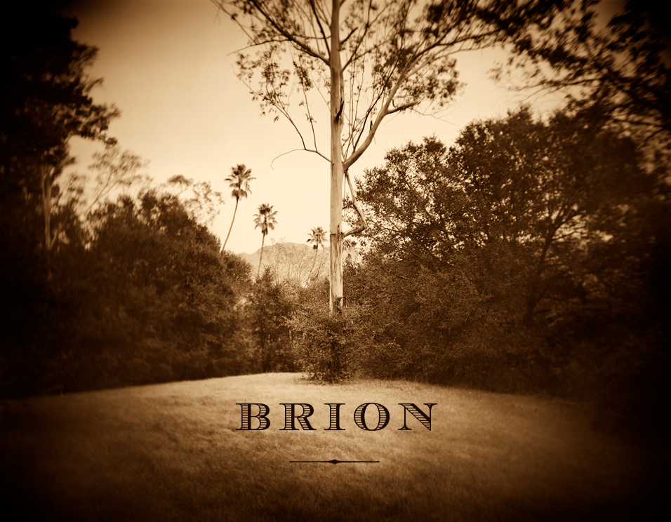BRION Wines